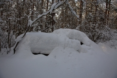 car-srapyard-sweden-2