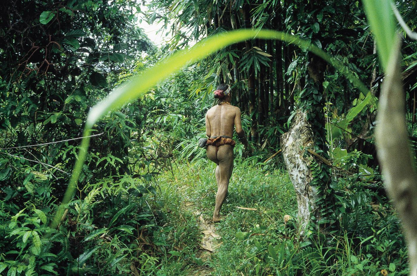 siberut-indonesia