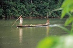 chiman-tribe