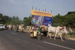 traffic-india