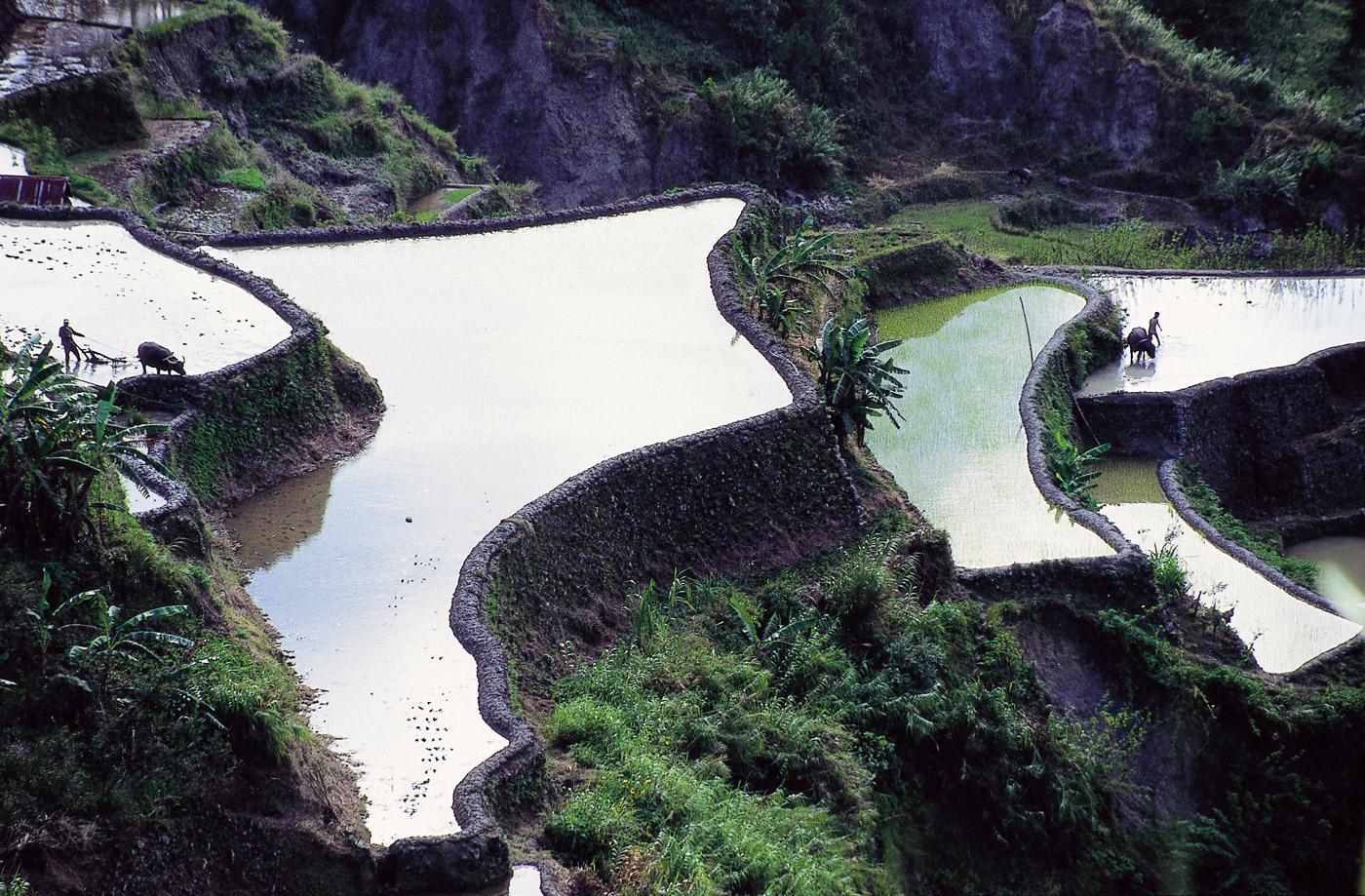 banaue-the-philippines