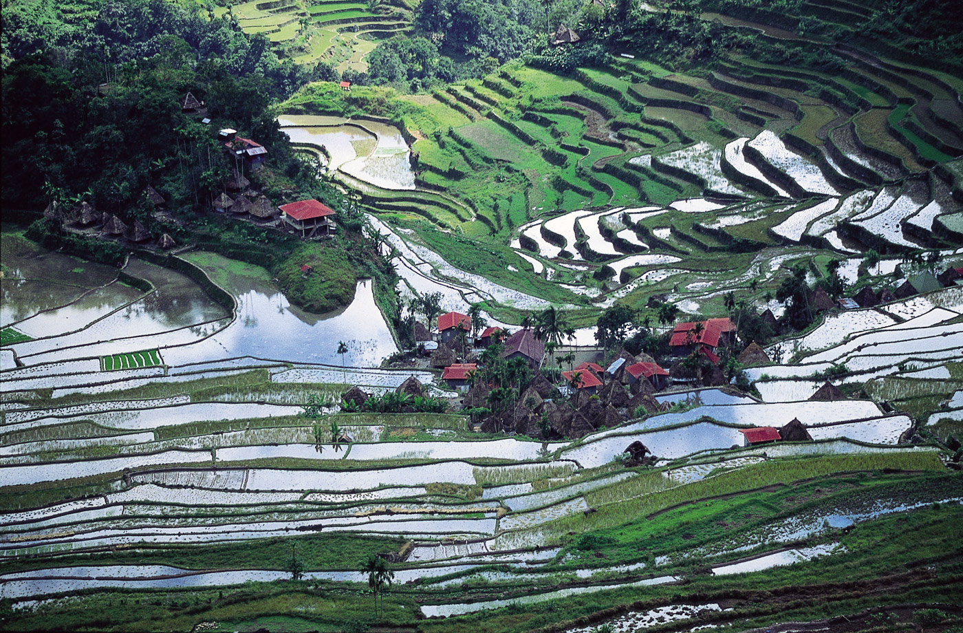 batad-the-philippines
