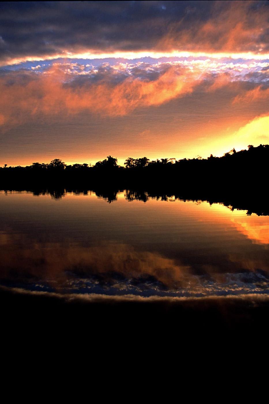 sunrise-amazonia